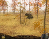 Pack Chasse - Safari Simulator - Screenshot 4